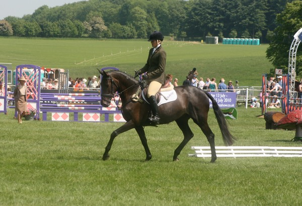 On Stage, Burghley Young Event Horse Championships -11th