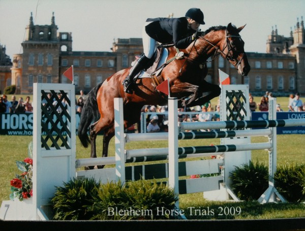 Blenheim Show Jumping 2009