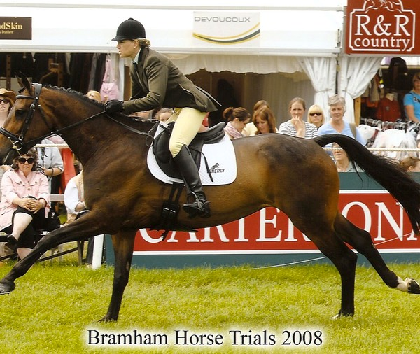 Bramham Young Event Horse, top ten- gallop 2008