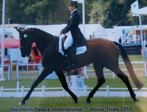 Blenheim Dressage 2010