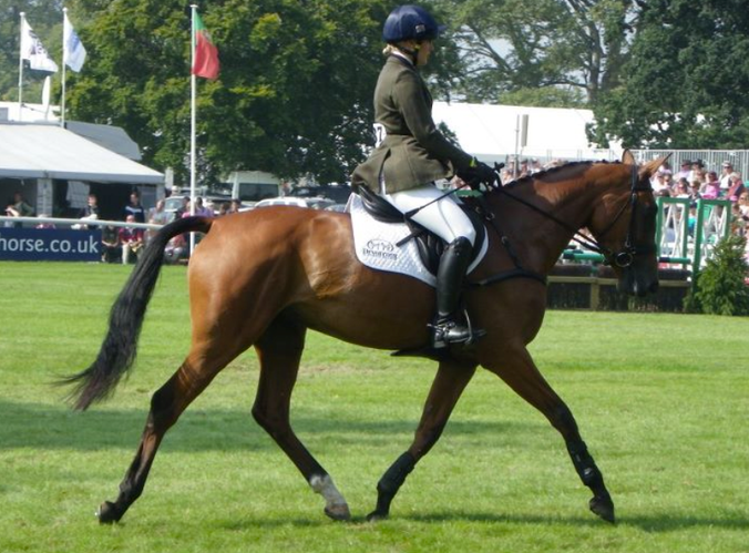 Dressage at Burghley 2011