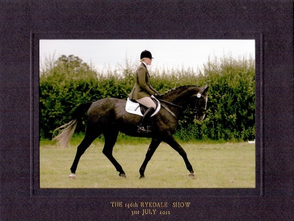 Qualifying for Burghley at Ryedale 4 Year Old Young Event Horse